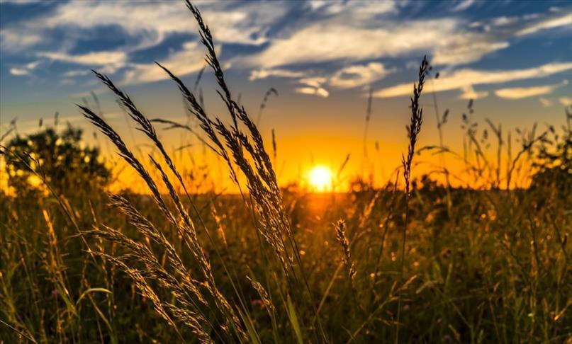 Tarım Kredi sözleşmeli üretimde hedef büyüttü
